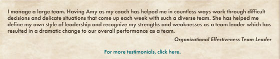 testimonial corporate coaching: amy ruppert